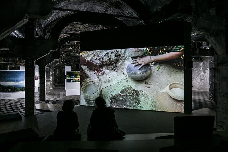 Antropoceno y las huellas del crimen - Revista Mercurio